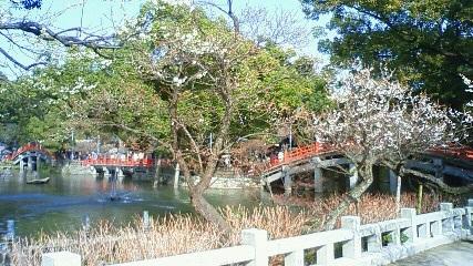 太鼓橋と心字池